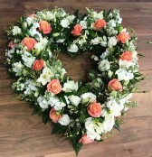 Coral And White Open Heart
